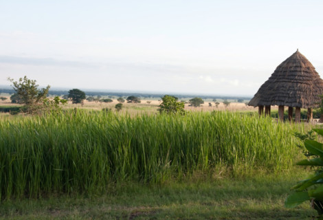 Kyambura Tented Camp